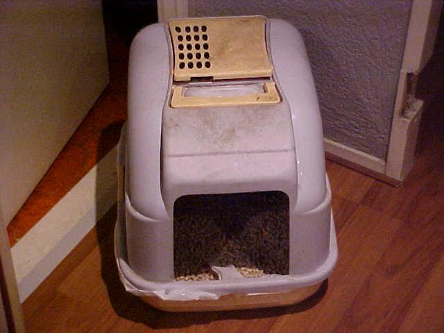 kattenbak ism makelaars