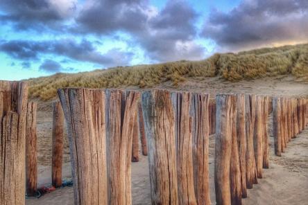 Strand zeeland ism makelaars