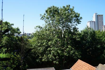 Uitzicht balkon 1e verdieping Badhuisstraat 157 ISM Makelaars