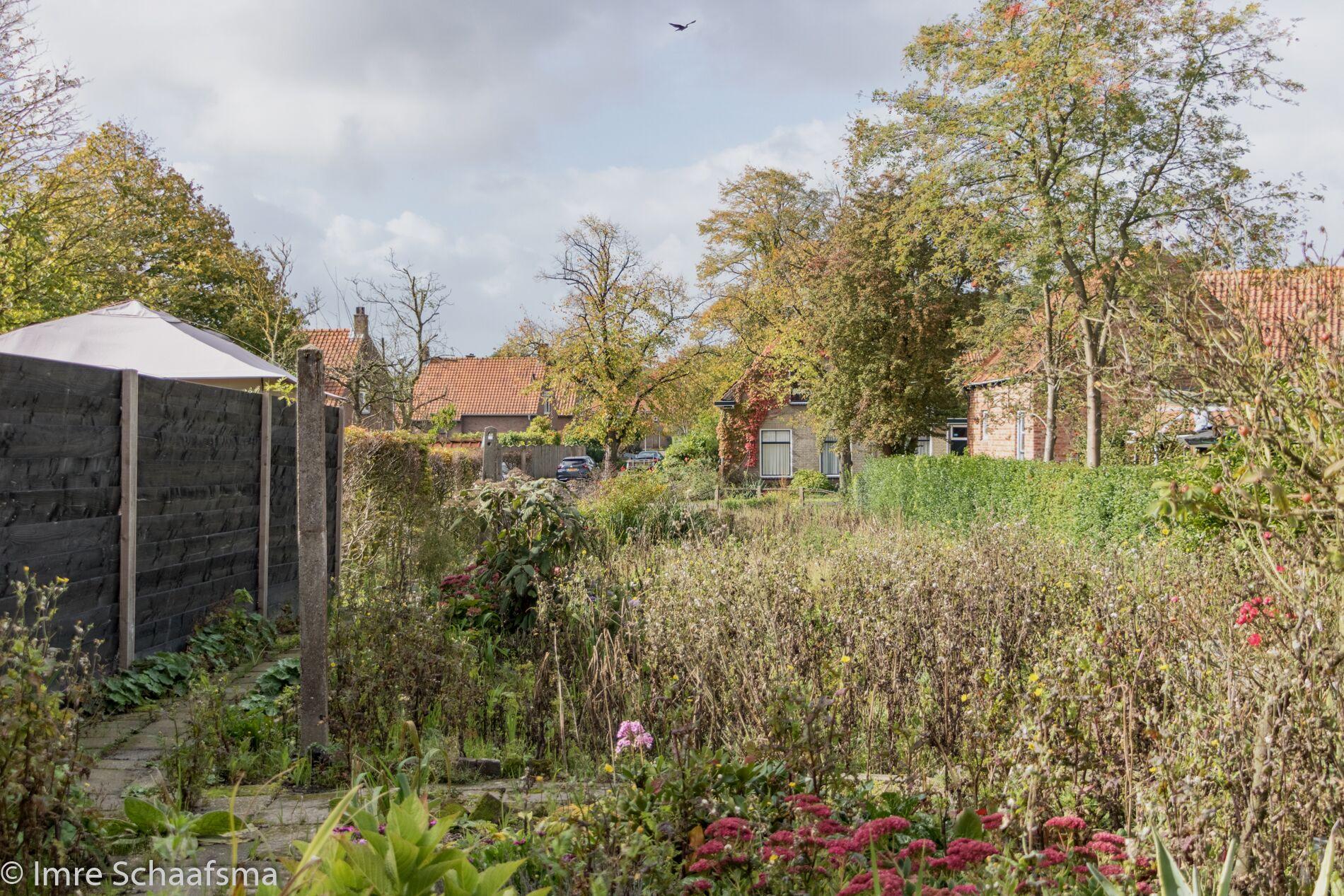 tuin Vermetstraat 24